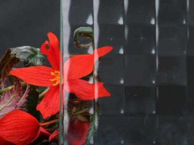geam-ornament-crossfield